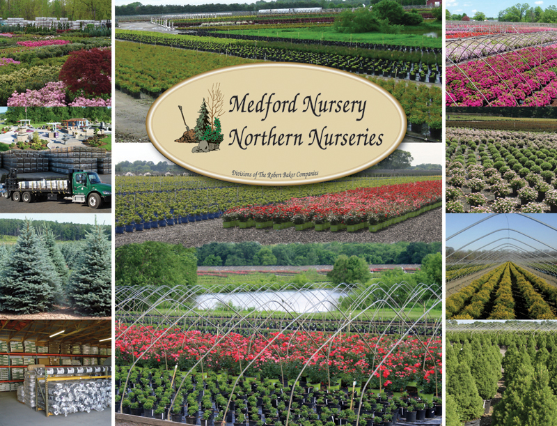 Medford Nursery Northern Nurseries Whole Horticultural Grower Supplier